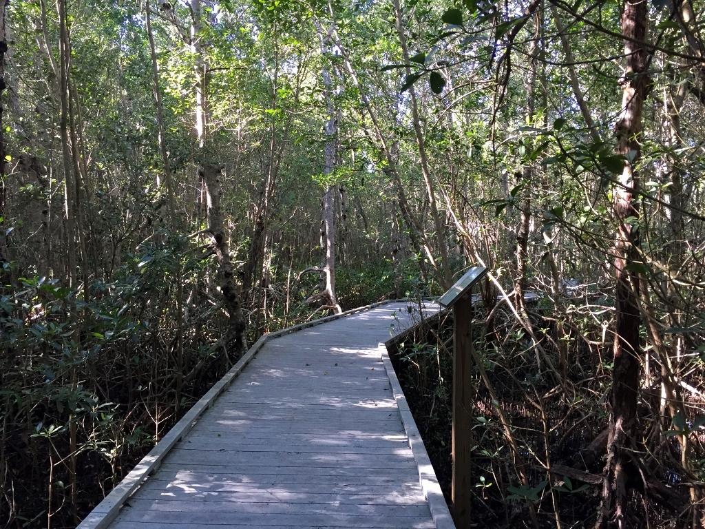 Four Mile Cove
