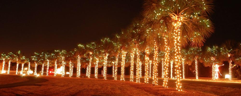 james island festival of lights james island county park christmas lights christmas decore .