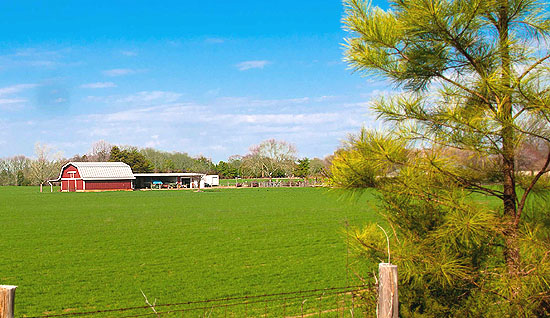 Farm in Marvin NC