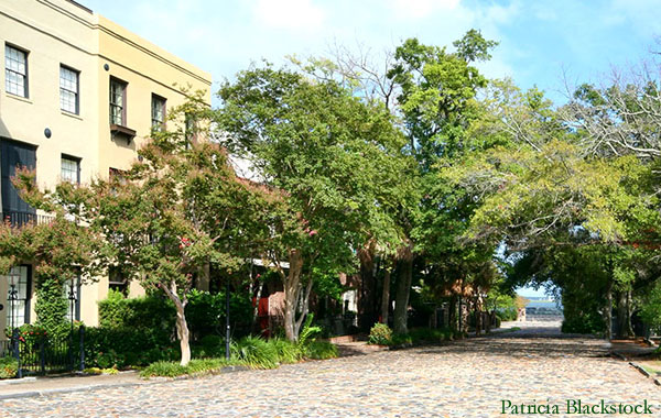 Historic Charleston Cobbleston Streets