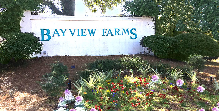 Homes for Sale in Bayview Farms, James Island