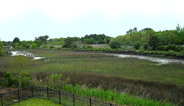 Marsh at Johns Island
