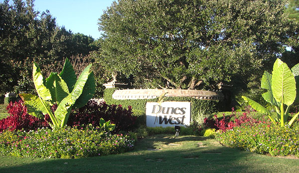 Homes for Sale in Dunes West Mt Pleasant SC