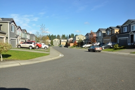 homes in frederickson