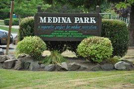 medina park