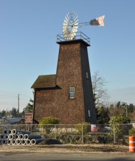 nyholm windmill edgewood