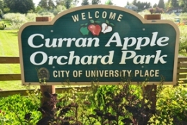curran apple orchard park