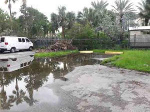 Ground flooding in Surfside Miami