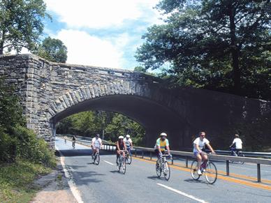 Biking Sundays Bronx River Parkway