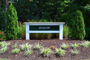 Lees Hill Real Estate Avalon Sign Image
