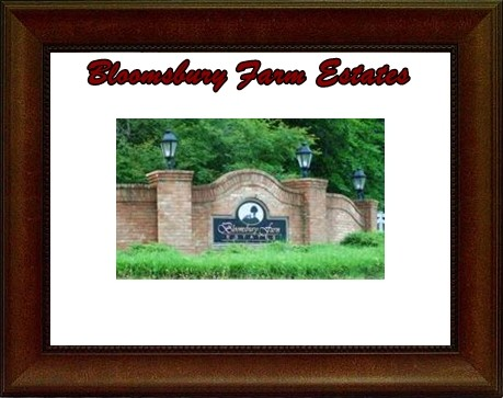 Bloomsbury Real Estate Spotsylvania VA