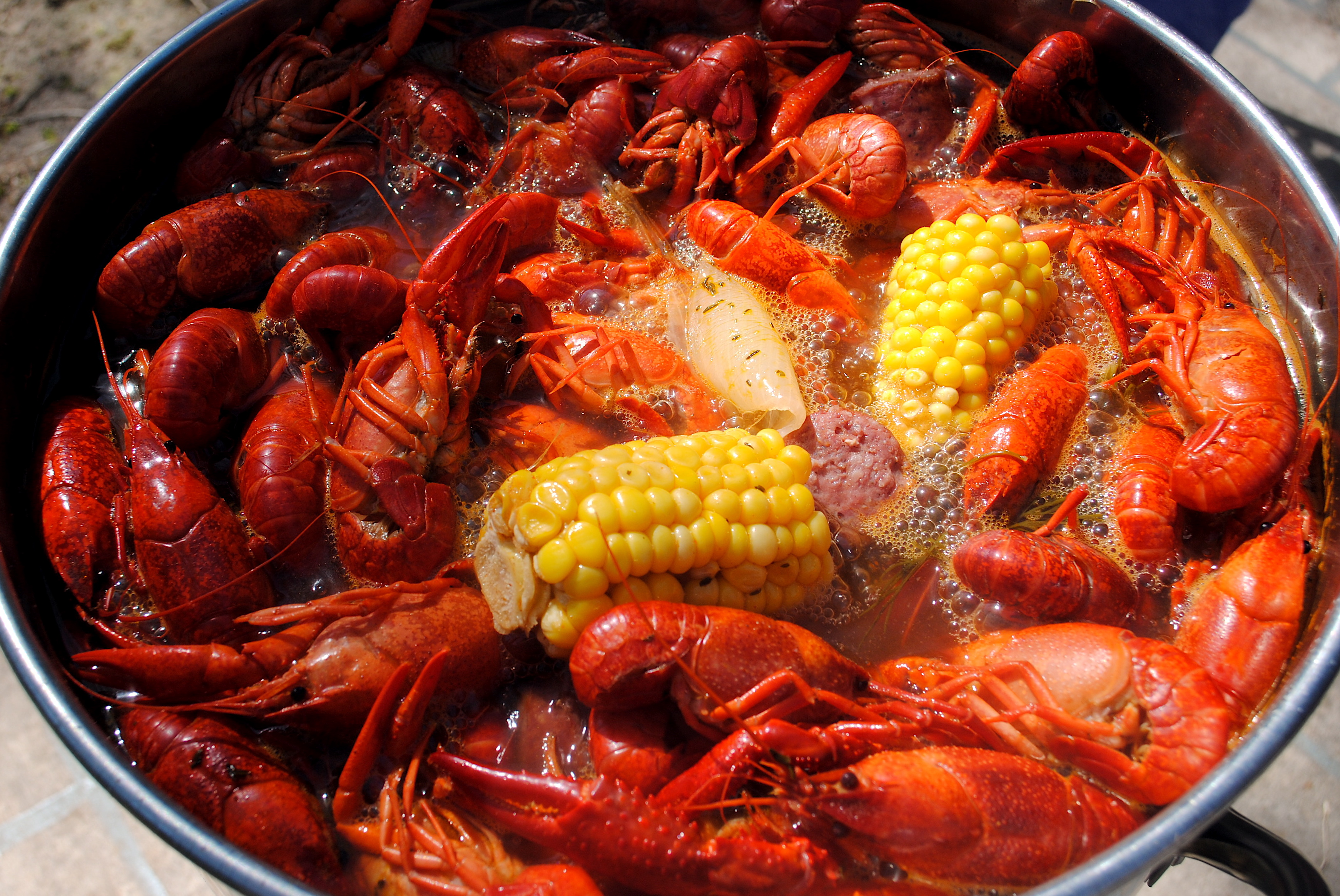 Crawfish Season New To Frisco Relocation Residents How To Eat Crawfish Head  Solution For How To