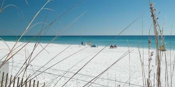 The beach at Destin, FL through seaoats