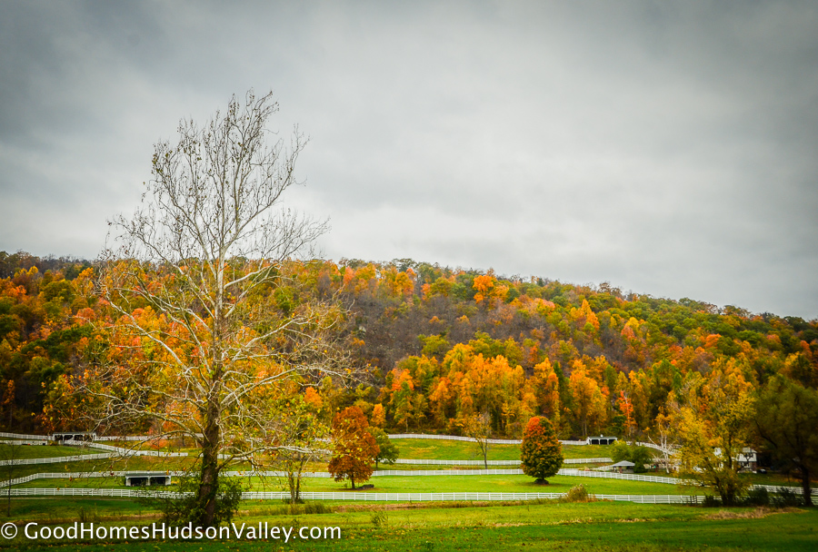 Horse Farms in Putnam County