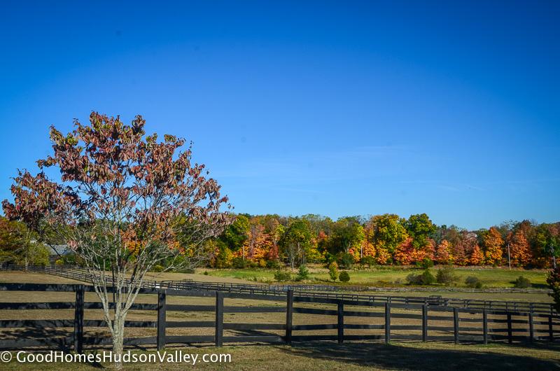 Horse farm in Warwick New York