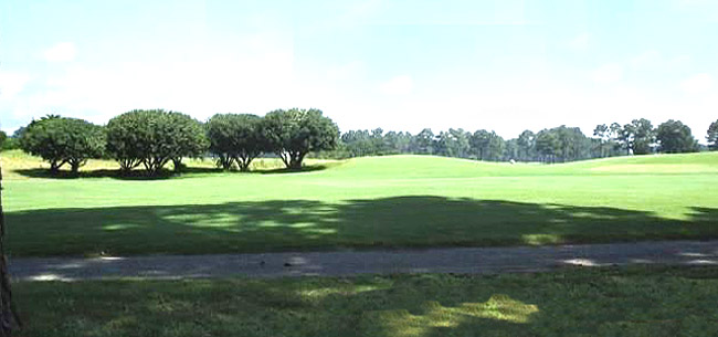 The Wizard Golf Course Views of Windsor Green