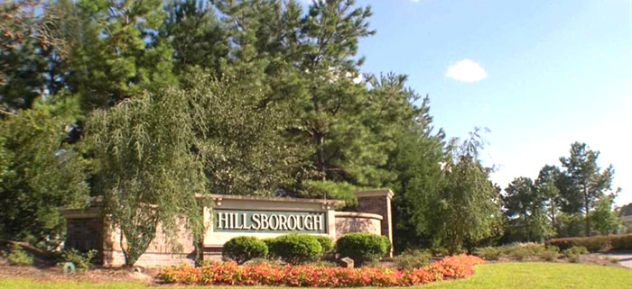 Homes for Sale in Hillsborough