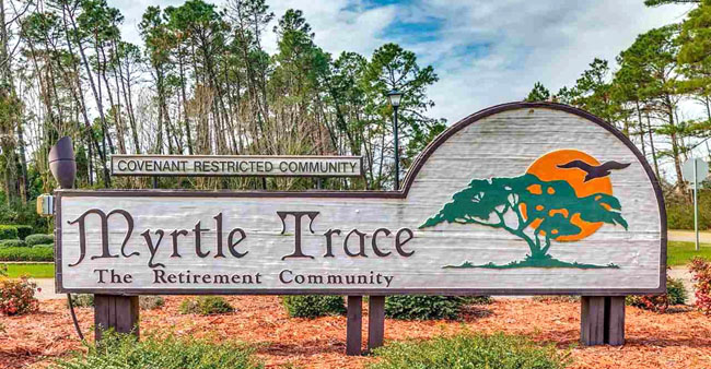 Homes for Sale in Myrtle Trace
