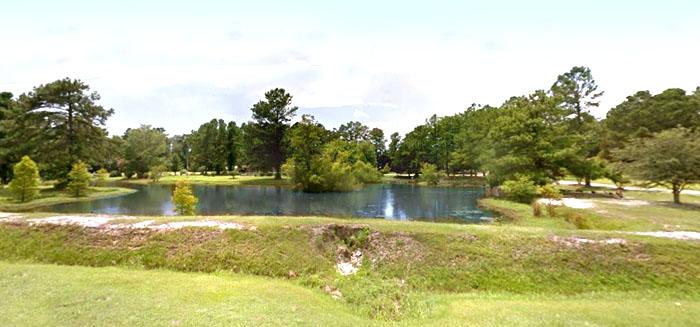 Roadside Pond on Hwy 9 in Longs