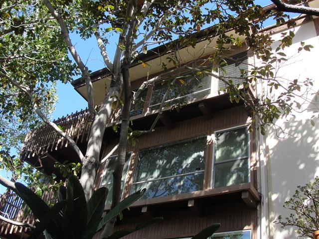 La Jolla condo for sale