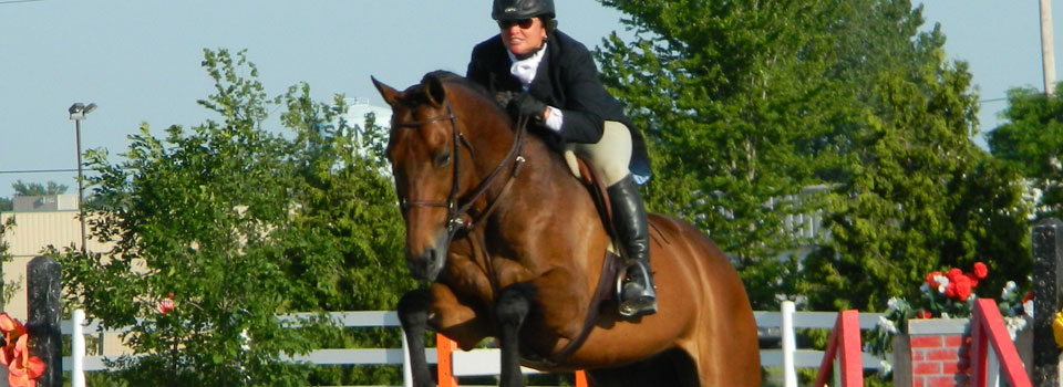 Jumper at Horse Show