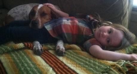 Keep Austin Weird Homes Dog Lovers