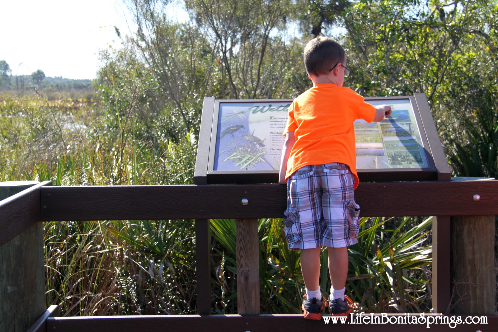 Aiden at Wetlands Sign
