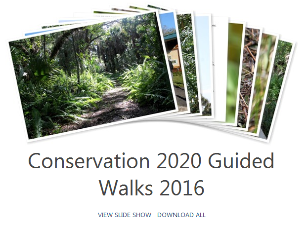Conservation 2020 Guided Walk
