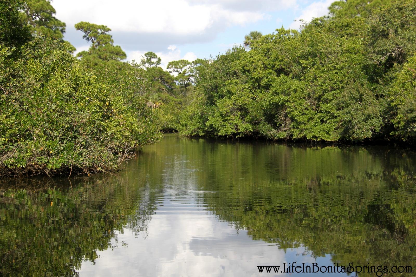 Koreshan Park Estero River
