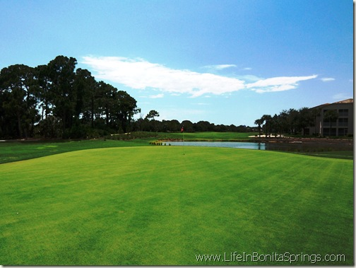 Bundled Golf Course Bonita Springs Florida