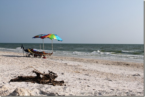 Two Umbrellas and Driftwood at Bonita Beach