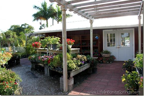 The Garden Corner Landscape Bonita Springs