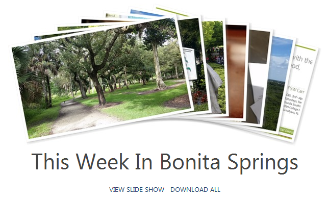 Bonita Springs Things to Do