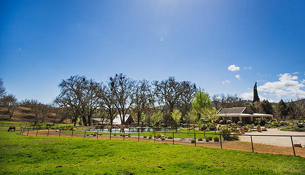 Rural West Paso Robles Ranch Home