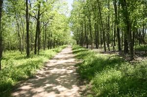 Trails at Sugarcreek Metor Park