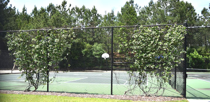 Tennis at Waterford Plantation