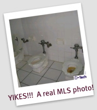 crappy toilet - horror MLS photos
