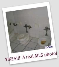 crappy toilet - horror MLS photos