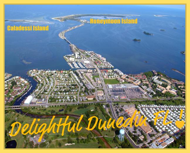 Living In Dunedin Fl : Delightful Dunedin FL Waterfront Living