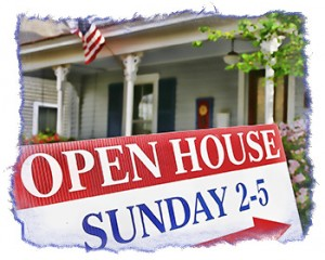 Palm Harbor Open Houses - Nosy Neighbors or Potential Sellers