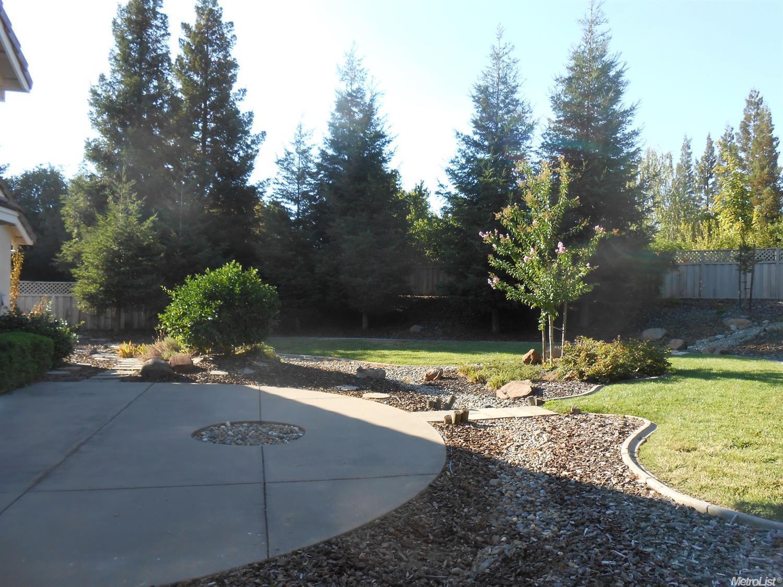 Roseville California Real Estate Agent Jesse Coffey