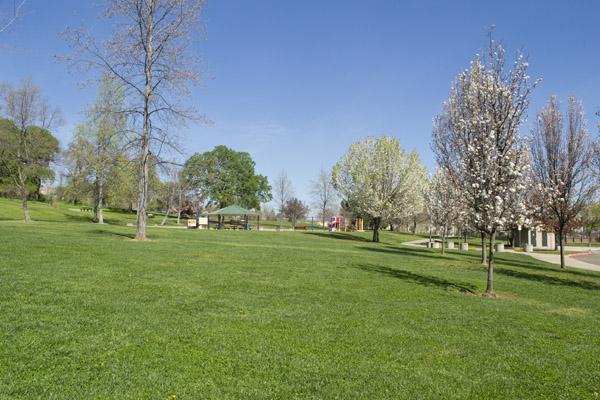 Briggs Ranch Park in Folsom