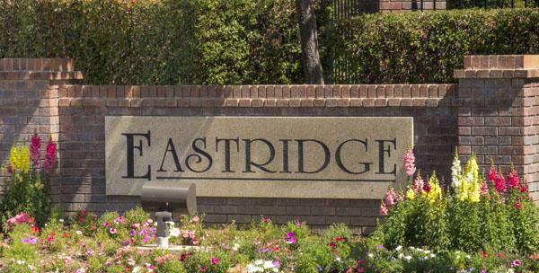 Homes for Sale in Eastridge, Granite Bay