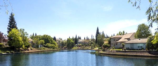Pond in Treelake Village