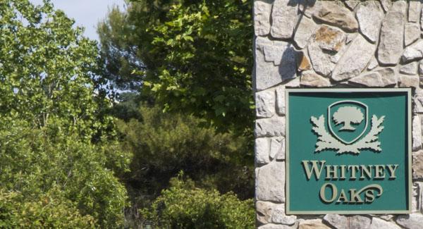 Homes for Sale in Whitney Oaks, Rocklin CA