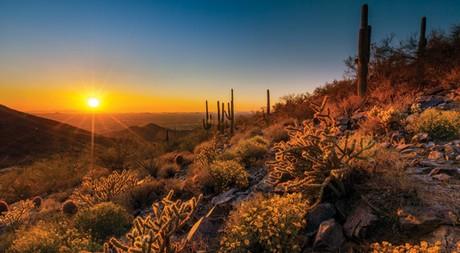 Scottsdale, AZ sunset