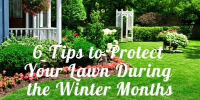 6 Tips to Protect Your Central Texas Lawn