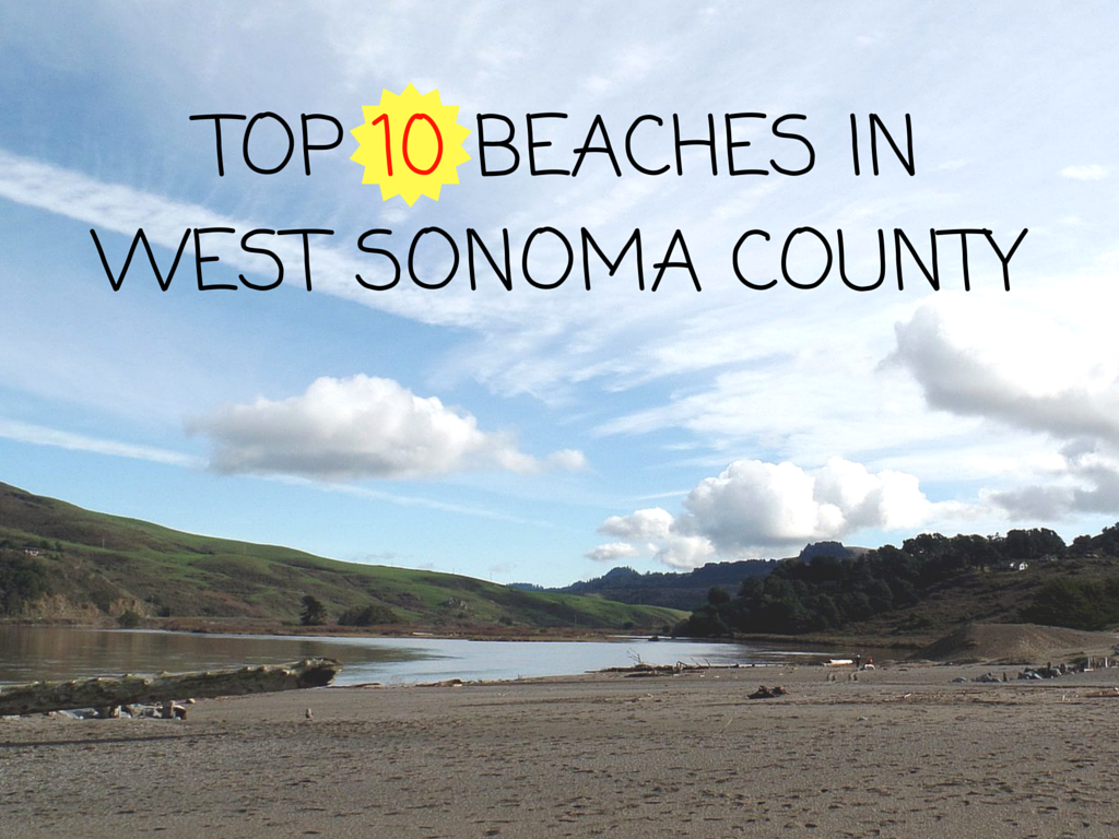 Top 10 Beaches In West Sonoma County
