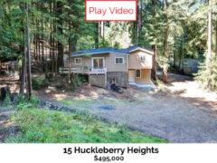 15 Huckleberry
