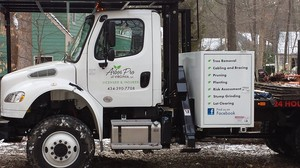 Best Tree Removal Service in Richmond VA